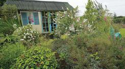Mike Hartwell's country garden
