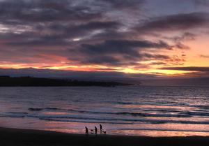 Sea view: Dog walkers on the beach in Portrush