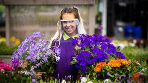 Shop assistant Naomi Ferguson holding two potted plants while wearing a face guard at Hillmount Garden Centres (PA)