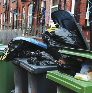 Pilot scheme: Banbridge council plans to reduce the collection of black bins