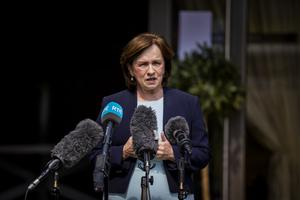 Diane Dodds said her party was not prepared to simply follow London's lead on Brexit issues (Liam McBurney/PA)