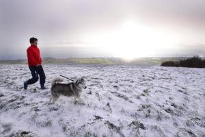 Jamie Dill from Greenisland pictured walking his dog Jodie