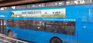 A Go Vegan World advertisement on the side of a Translink bus