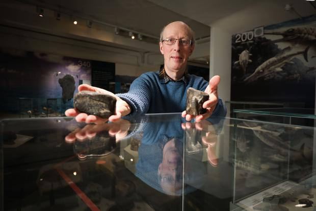 Dr Mike Simms, of National Museums NI, with the fossils