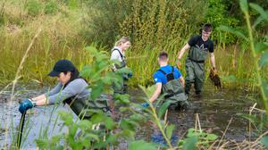 RSPB NI Team Day with PwC interns at Belfast Harbour Meadows in September 2019 (Chris Thompson/PA)