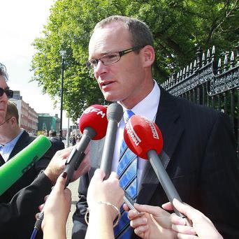 Simon Coveney said there will be an investigation into any possible fraud in the horse meat scandal