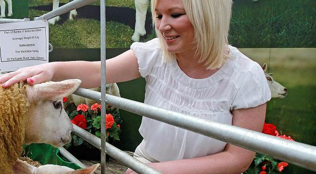 Minister for Agriculture Michelle O'Neill