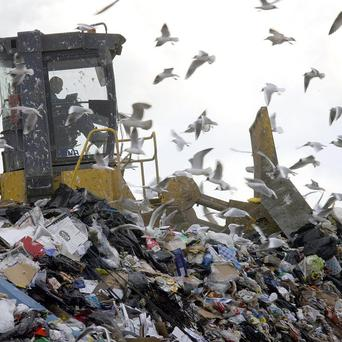A proposed incinerator would burn black bin waste from councils in the east of Northern Ireland, which normally goes to landfill