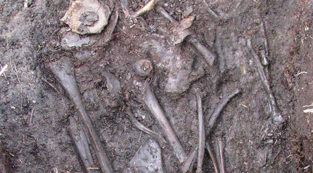 The remains found at the crannog site in Co Fermanagh (Department of the Environment/PA)