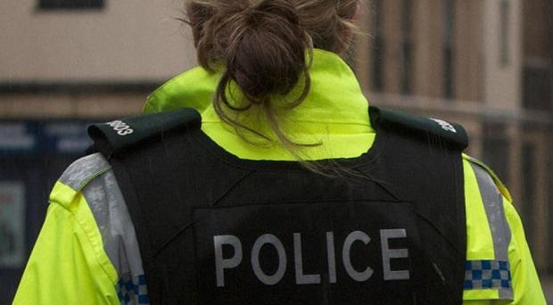 A woman was sexually assaulted in the grounds of Craigavon Area Hospital in Co Armagh