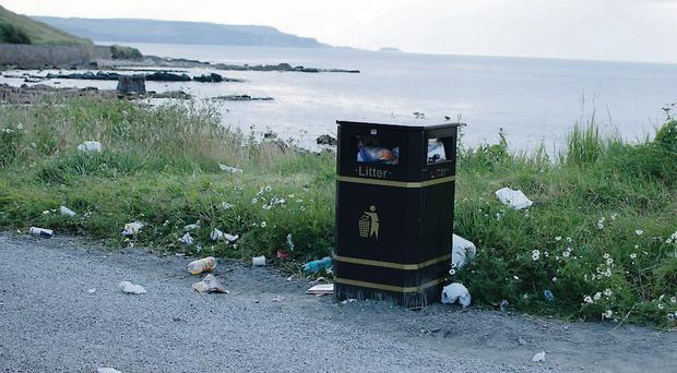 Litter near Marconi's cottage