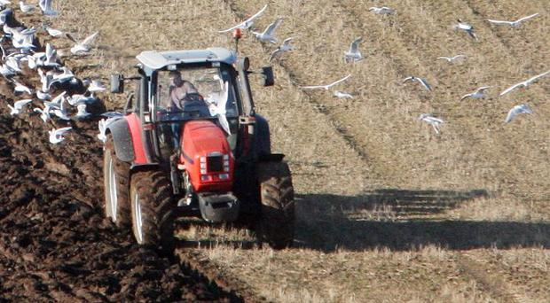 It is the latest of a series of tragedies to hit the agricultural community in Northern Ireland