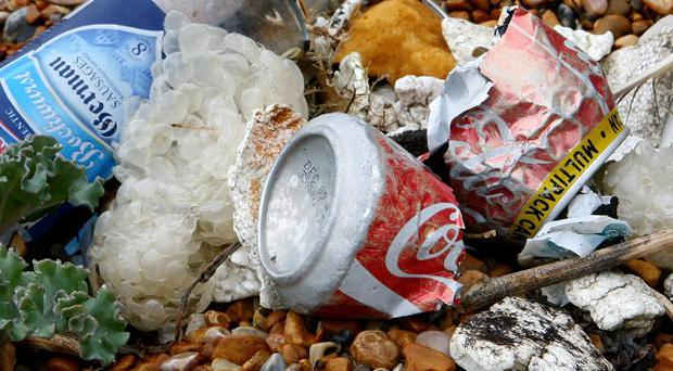 The north coast had more litter in general, a survey suggests
