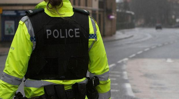 Three police officers were injured during a disturbance in County Down in which three people were arrested