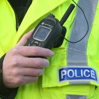 Fifteen men were held over a petrol bomb attack in Ballymena