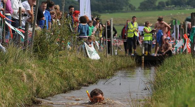 A competitor takes part in the annual World Bog Snorkelling Championship