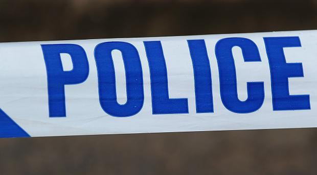 A woman is recovering after being stabbed in Belfast.