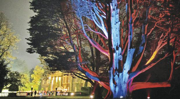How Mount Stewart will look during the Festival of Light
