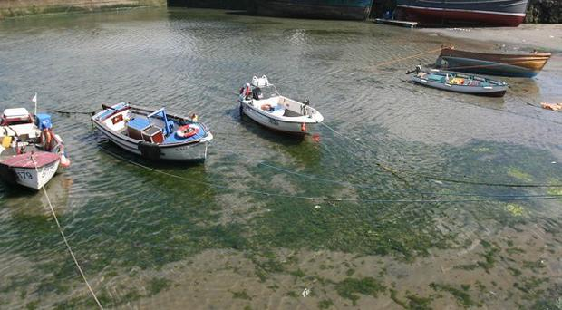 Fergal Kavanagh's body was found in the sea outside Ardglass harbour
