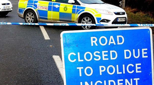 A man has died after a car collided with a horse