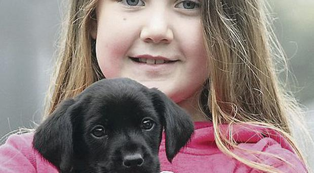 Puppy Pepsi safe in the arms of 10-year-old Cameron Moules at the farm