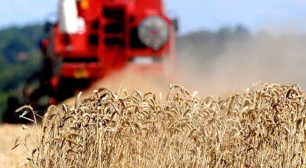 The Ulster Farmers Union has expressed concern at the level of rural crime in Northern Ireland