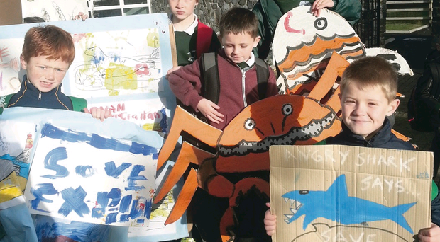 Schoolchildren show their support for Exploris in Portaferry