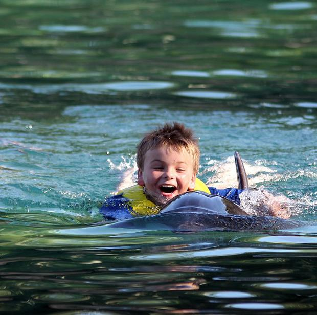 Aaron McLaren from Edinburgh swims with a dolphin at Discovery Cove, Orlando, Florida as part of the annual Dreamflight Charity trip to the USA
