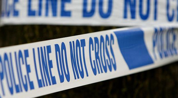 A man has died after a house fire in Co Down
