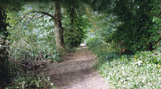Controversy: the Back Avenue path in Broughshane