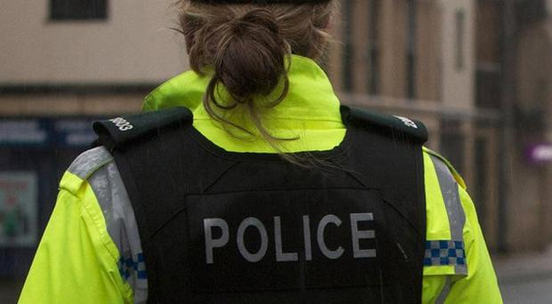 A pipe bomb was found in the Spamount Street area of north Belfast