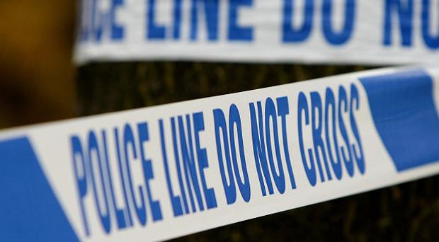 Police are investigating a gun attack on police vehicles in Belfast.