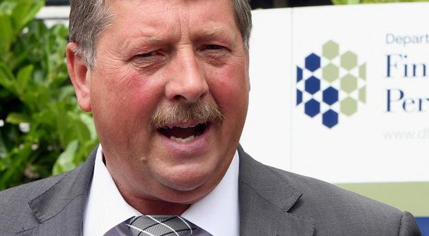 Sammy Wilson says the DUP would - if victims wanted it - support granting limited immunity to perpetrators of Troubles killings in exchange for information about the crimes