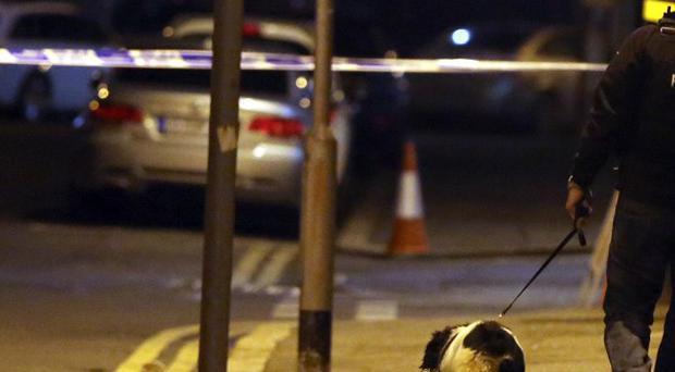 Police with a sniffer dog search the Cathedral Quarter in Belfast after a small explosion