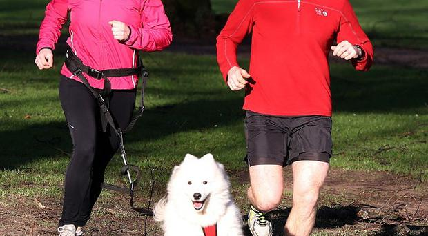 Neil and Ruth Robinson, with their dog Zola, training for the Waggy Race at the Castle Ward estate in Co Down