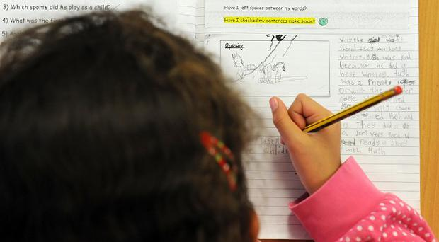 A pressure group claims fewer than one in 10 of Northern Ireland's primary schools are fully checked during an academic year