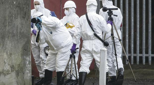 PSNI forensic officers launch a detailed examination at the Newry house