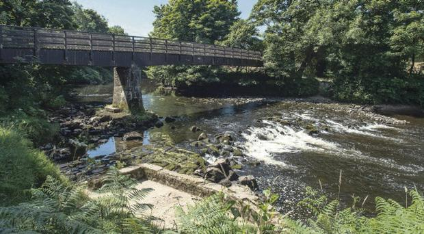 Steven Mitchell drowned in the River Roe Roe Valley Country Park where Steven Mitchell lost his life