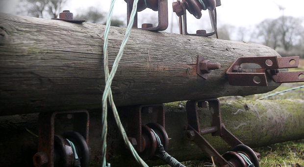 The electricity poles which were cut down by thieves in Newtownabbey to get access to the copper inside the power cables Jonathan Porter/Presseye
