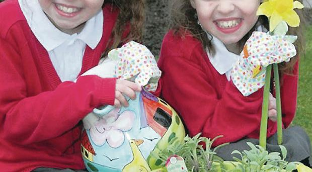 Green-fingered Ballycraigy Primary School twins Madison and Chelsea Palmer potter around ahead of the show