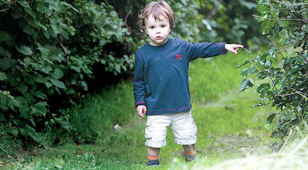Nature enthusiast: Luis Dawson, from Bangor, in Kilcooley Wood