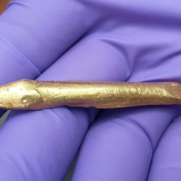 A rare golden fish, that experts believe is part of an ornate belt buckle, was discovered by Barry Shannon while metal detecting on his aunt's farm in Ballyalton near Downpatrick