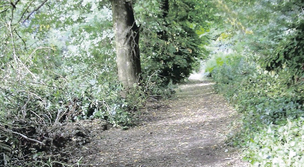 The old mill path in Broughshane was once used by mill workers on their way to work