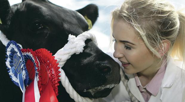 Tara O'Brien with her prizewinning cow Mia at Omagh show on Saturday