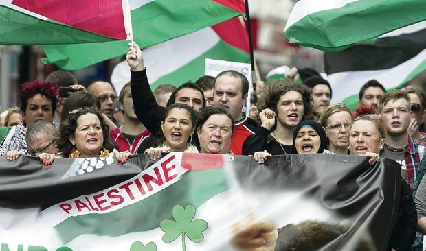 Pro-Palestinian protesters who attended a demonstration in Belfast city centre. Picture by Liam McBurney/RAZORPIX