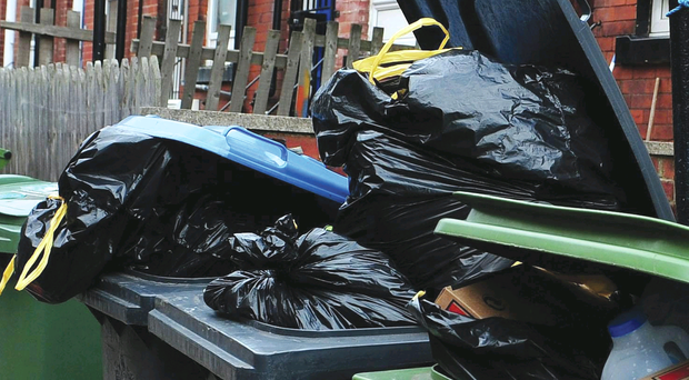 A council is facing a ratepayer revolt over plans to reduce black bin collections to just once a month