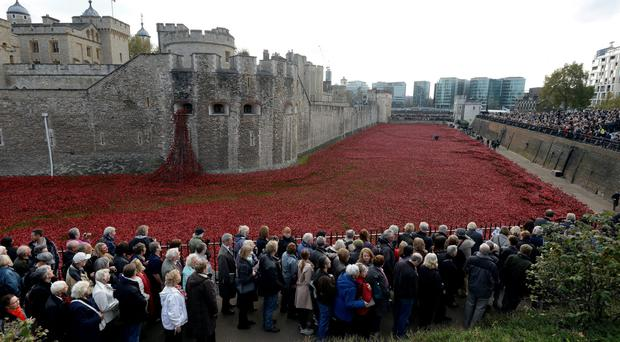 Armistice Day crowds look at the art installation 'Blood Swept Lands and Seas of Red' by artist Paul Cummins at the Tower of London yesterday
