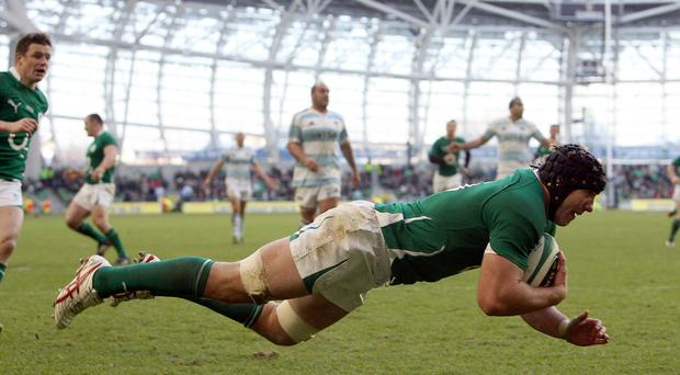 An all-Ireland bid to stage the 2023 Rugby World Cup is expected