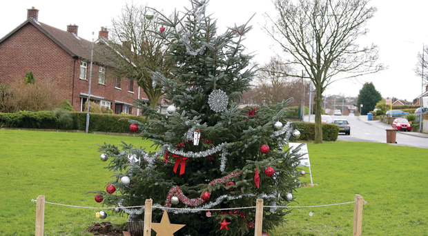 The new Christmas tree erected by residents of the Braniel estate