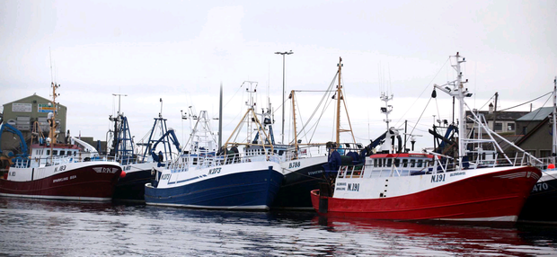 Northern Ireland's largest commercial trawler fleet at Kilkeel in Co Down